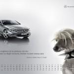 2010-10-22_kalendarz_2011_osobowe_prefka_cl