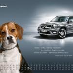 2010-10-22_kalendarz_2011_osobowe_prefka_glk