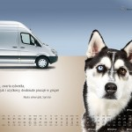 2010-10-22_kalendarz_2011_vany_ciezarowe_prefka_sprinter